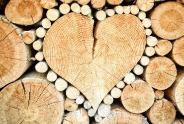 fenyőker fatelep fenyő fűrészáru fakereskedés tüzép termékek kalodás tűzifa minőség keményfa bükk tölgy kaloda 18. kerület budapest